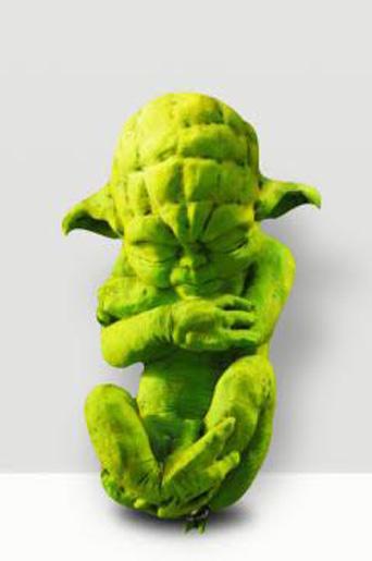 NICOLAS- Yoda Foetus